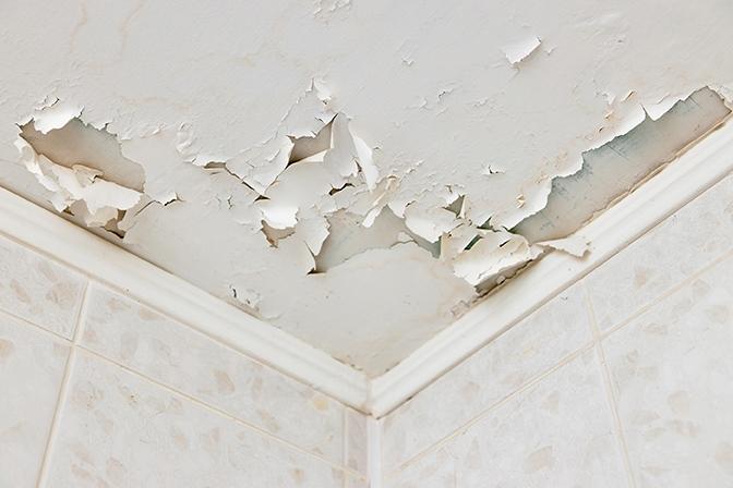 South Florida Public Adjuster home damage