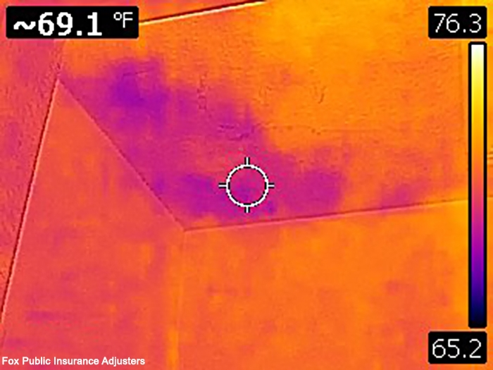 Thermal camera image showing ceiling home damage