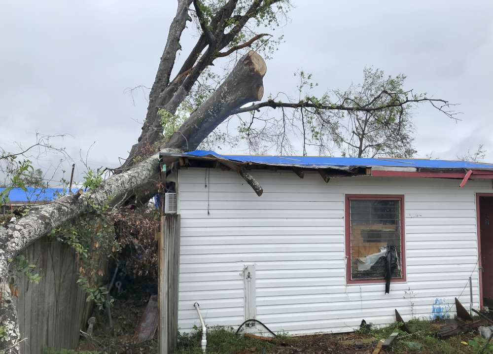 Tree damage hits a South Florida home