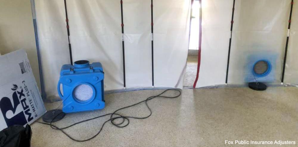 South Florida home mold removal.