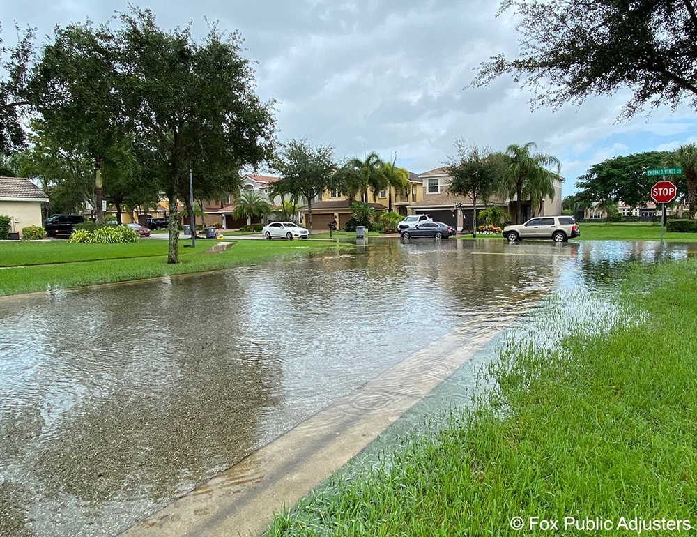Flooding in a Palm Beach County community