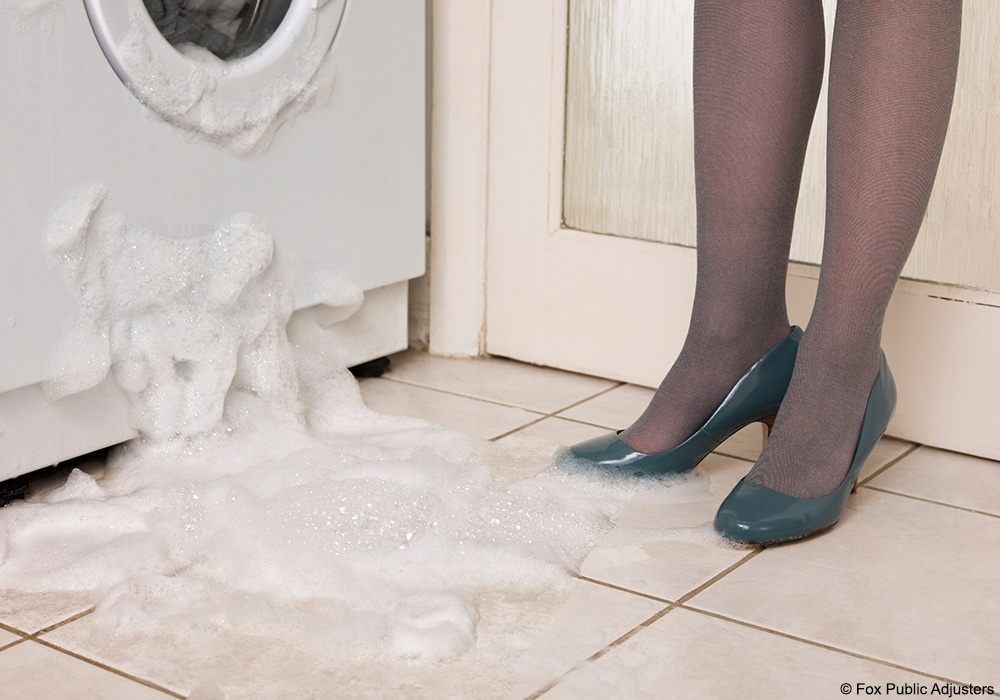 A leaking washing machine could start mold growing fast.