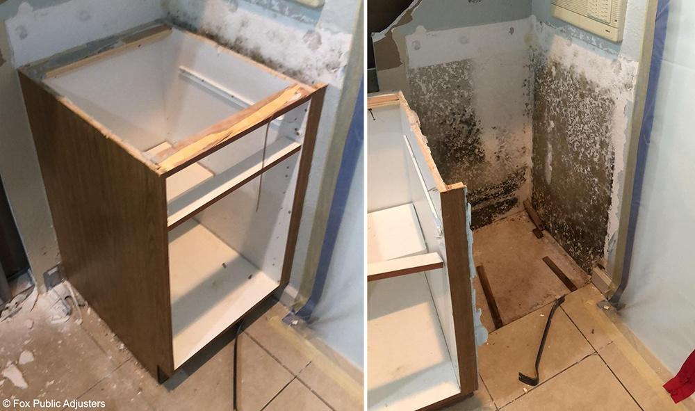 Mold Hiding in a Martin County Home