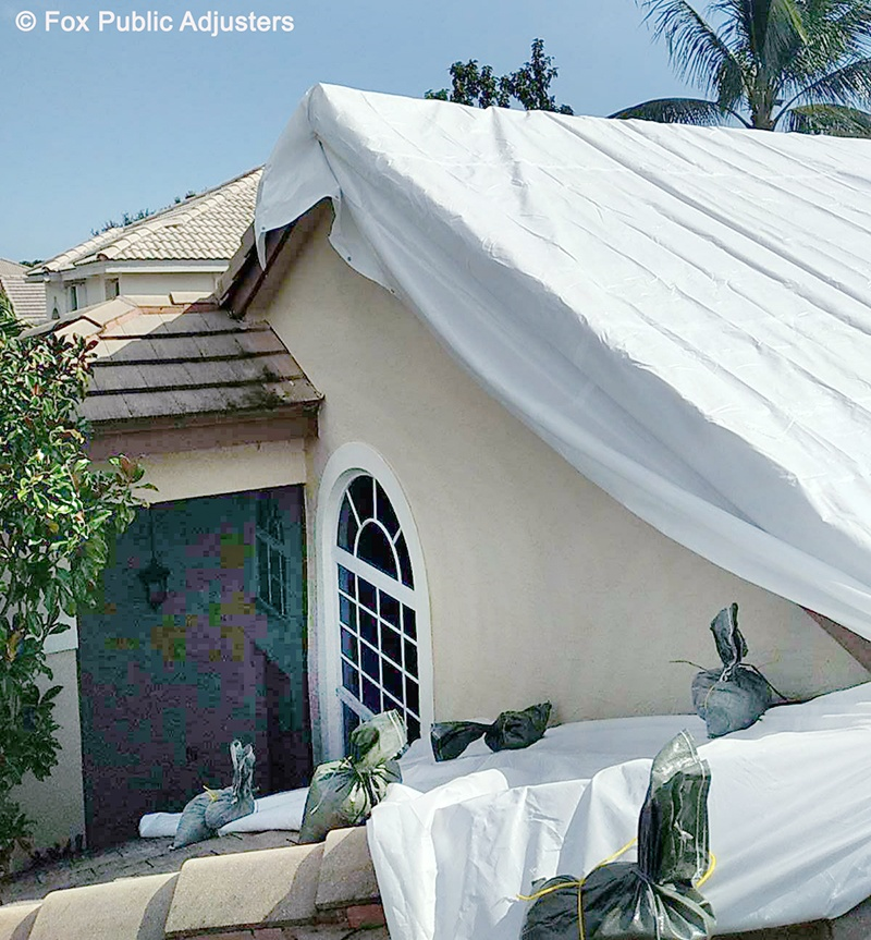 Roof Damage in a Tampa Home