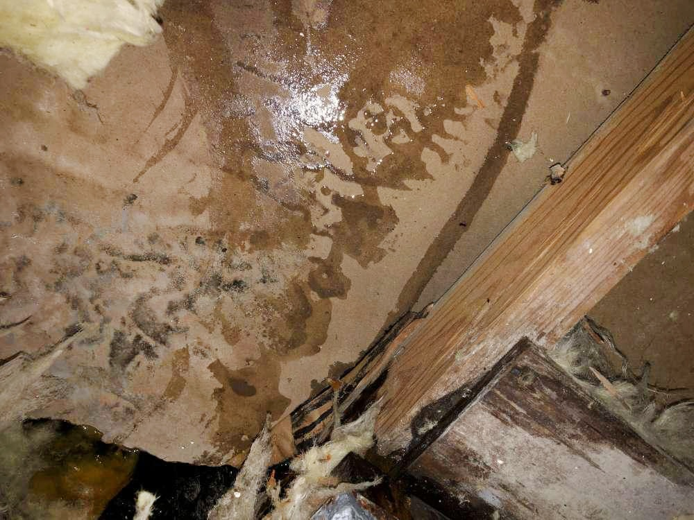 If you come home to this and your South Florida water damage claim denied let Fox Public Adjusters help.